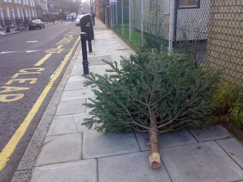 Poor_tree